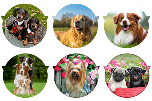 Подставка керамическая (круглая) Собаки в ассортименте