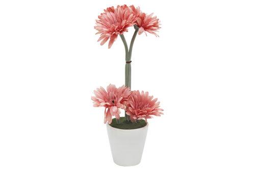 Декор.цветы Герберы св.коралловые в керам.вазе