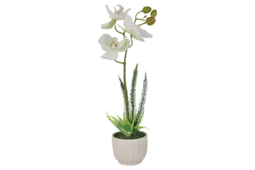 Декоративные цветы Орхидея белая в керам.вазе